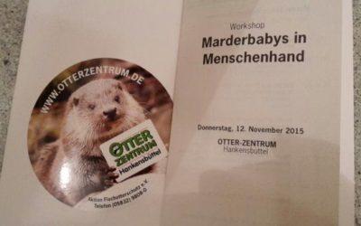 """Seminar """"Marderbabys in Menschenhand"""" im Otterzentrum Hankensbüttel"""